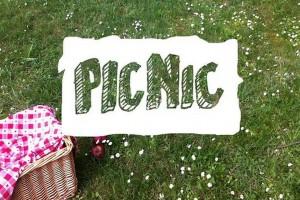 IT пікнік